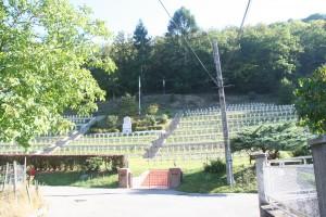 Chollet jean-baptiste (retrouvé): IMG_3878-300x200